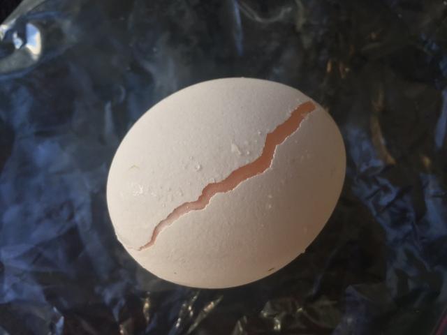 1つの卵から2個の目玉焼きを作る