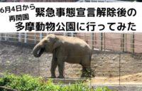 再開園した多摩動物公園に行ってみた・人出状況や利用できない場所について